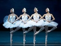 Tchaikovsky - Swan Lake. Dance of the Little Swans