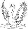 Сен-Санс - Карнавал животных. Лебедь